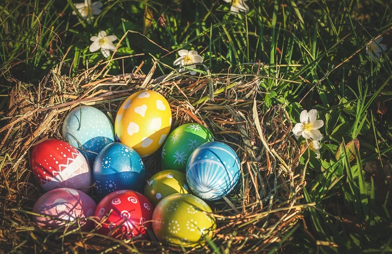An Easter nest of brown woven straw containing 10 painted eggs of various colors and patterns, upon green grass with small white flowers for words beginning N for Easter