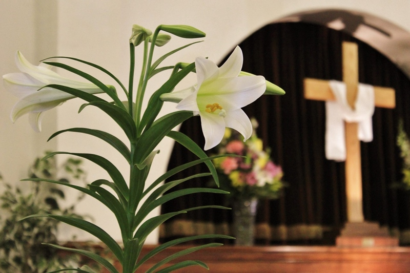 Wood cross at a church draped with a white cloth, next to basket of flowers and in close foreground an Easter lily plant