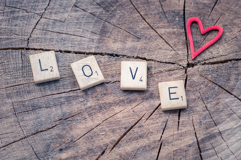 Letter tiles spelling the word love with a red heart all on a big wood log with cracks in it