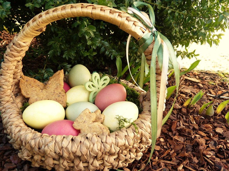 Straw Easter basket with woven rounded handle, containing 8 pastel colored eggs plus some baked goods shaped as butterflies and bunnies
