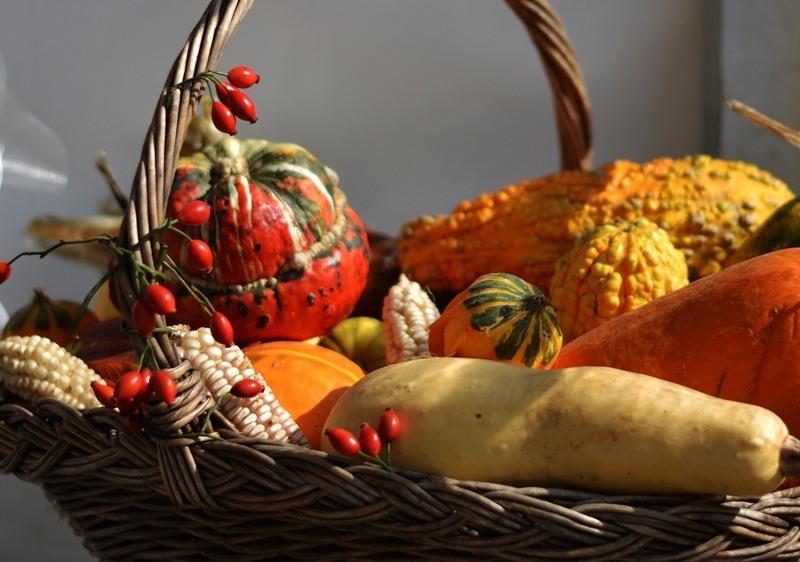 thanksgiving start b basket